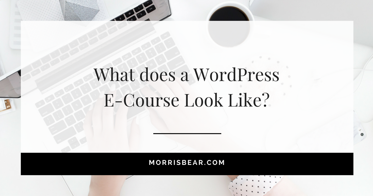 What does a WordPress E-Course Look Like?